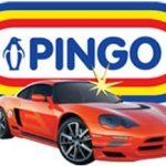 Описание компании ПИНГО (ООО «Пинго дистрибьюторз»)